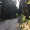 定光寺までの参道